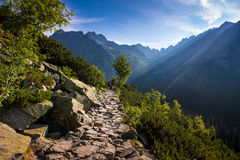 Morning in High Tatras, Slovakia Stock Photos