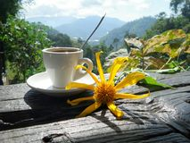 Morning hot coffee in cold morning in the valley Stock Photo