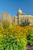 Morning at the Idaho State Capital with blooming yellow flowers Royalty Free Stock Photography