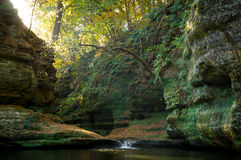 Morning in Illinois Canyon. Sunlight entering Illinois Canyon on a beautiful Autumn morning.  Starved Rock State Park, Illinois, USA Stock Photo
