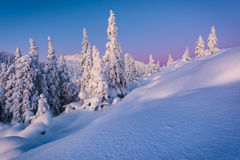 Morning illuminations. Sunrise on a snow-filled landscape near Kongsberg, Buskerud, Norway Royalty Free Stock Photos