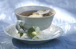 Morning with jasmine tea cup Royalty Free Stock Photos