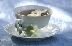 Morning with jasmine tea cup Royalty Free Stock Photos