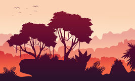 At morning jungle landscape collection Royalty Free Stock Photography