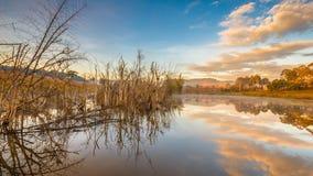 Morning Lake Royalty Free Stock Images