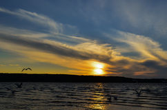 Morning at the lake Royalty Free Stock Photography