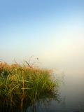 Morning lake and fog Royalty Free Stock Photo