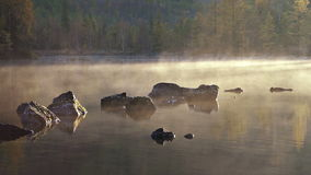 Morning lake and fog after sunrise stock footage