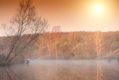 Morning lake. Tree near foggy morning lake Royalty Free Stock Photos