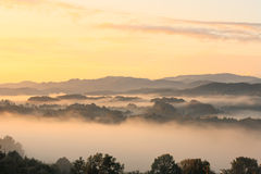 Morning landscape Stock Image