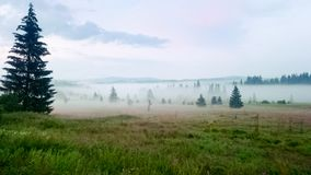 Morning landscape in Bohemian Forest. Czech Republic stock images