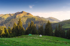 Morning landscape with camping in the mountains. Camping in the mountains. Two tourist tents on a green hill. Morning landscape with sunshine and clear blue sky Royalty Free Stock Photos