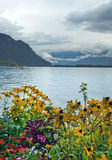 Morning landscape with flowers on Lake Geneva Stock Photography