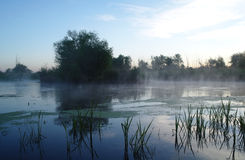 Morning landscape with fog on the river Royalty Free Stock Photography
