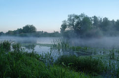 Morning landscape with fog on the river Royalty Free Stock Photos