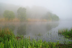 Morning landscape with fog on the river Stock Photography