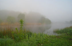 Morning landscape with fog on the river Royalty Free Stock Images
