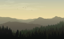 Morning landscape with misty silhouettes of mountains and hills,. Forest with coniferous trees and flying bird in the yellow toned sky Royalty Free Stock Photos