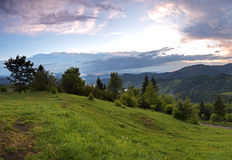 Morning landscape in the mountains. Carpathian Stock Photography
