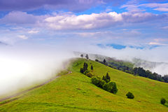Morning landscape in the mountains. Carpathian Stock Photo