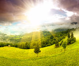 Morning landscape in the mountains. Carpathian Stock Image