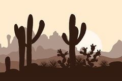 Morning landscape with saguaro cacti, prickly pear, and agave in mountains.   Stock Photography