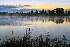 The morning landscape with sunrise over water in the fog Royalty Free Stock Images