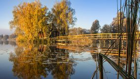 Free Morning Landscape, Wooden Hunting Lodge, On A Small Man-made Island. A Wooden Platform Is Coming To The House, Birch Trees Are Stock Photo - 161304580