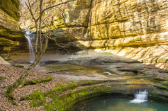 Morning in LaSalle Canyon. Royalty Free Stock Photo