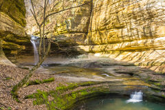 Morning in LaSalle Canyon. Royalty Free Stock Photos
