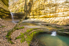 Morning in LaSalle Canyon. Early Spring morning in LaSalle Canyon, Starved Rock, Utica, Illinois Royalty Free Stock Images