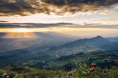 Morning light. At Phutapberk, Petchaboon, Thailand Royalty Free Stock Photo