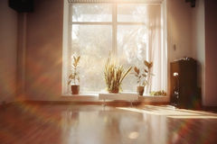 Morning light in empty room. With window Royalty Free Stock Photo