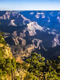Morning light at Grand Canyon Royalty Free Stock Image