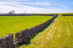Morning light illuminating traditional dry stone wall in the Lake District, Cumbria. Stock Photography