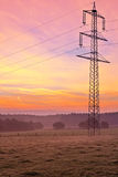 Morning light over the land, power line on a scythed co Stock Photography