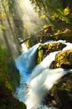 Morning light over Sol Duc falls Royalty Free Stock Images