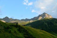 Sunrise in Ratikon, Graubunden Canton, Switzerland Royalty Free Stock Photography