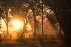 Morning lights stock image