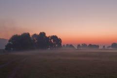 Morning meadow Stock Photo