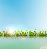Morning meadow grass green reflection in lake. Morning meadow grass green reflection on water lake over blue sky background and bright sun - vector Stock Image
