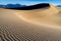 Death Valley Mesquite Sand Dunes royalty free stock photo