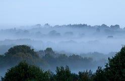 Morning Mist Royalty Free Stock Image