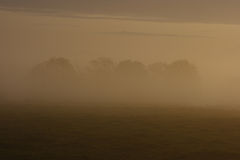 Morning mist 2 Stock Photography