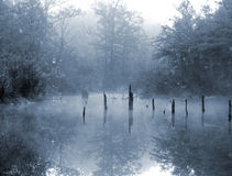 Morning Mist. A morning shot of a misty lake Royalty Free Stock Photo