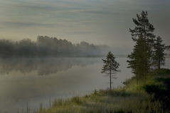 Morning mist. Over a river in Halsingland, Sweden Royalty Free Stock Photography