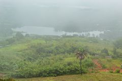 Morning mist above the reservoir and the trees at Phetchabun. stock images