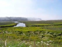 Morning Mist on Beluga Slough Stock Photography