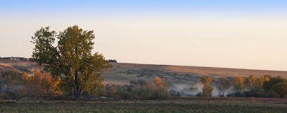 Morning Mist on the Colorado Prairie Royalty Free Stock Photo
