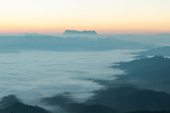 Morning mist cover  mountain. Morning mist cover tree and mountain Royalty Free Stock Photos